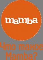 Что такое Мамба?